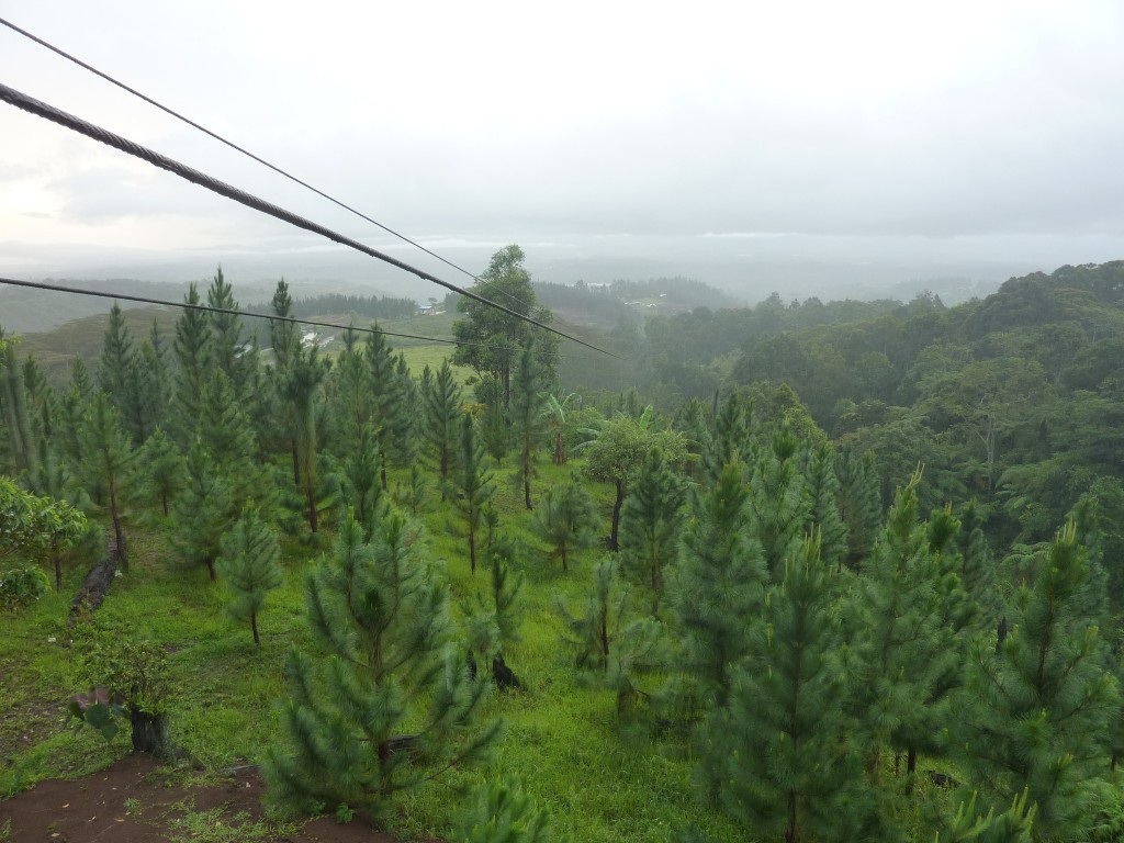 longest dual cable zipline in asia - dahilayan bukidnon