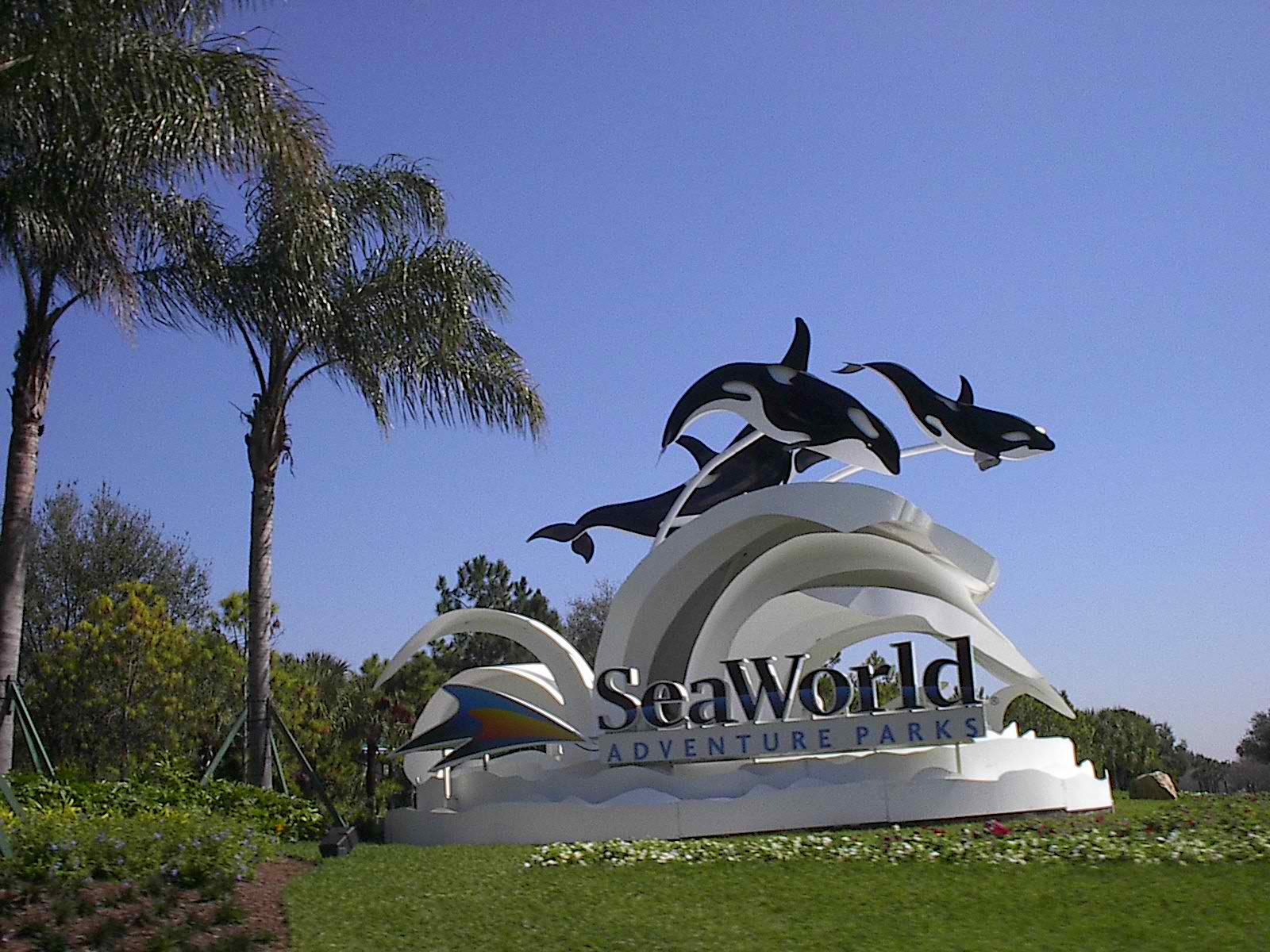 Sea-World-Orlando-Florida