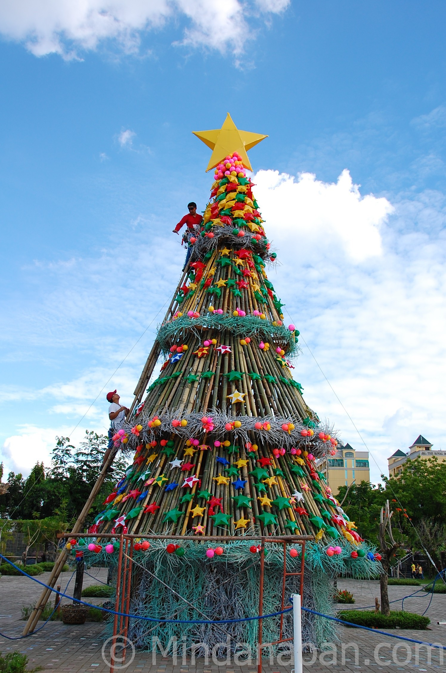 Giant Christmas Tree At People S Park Davao City