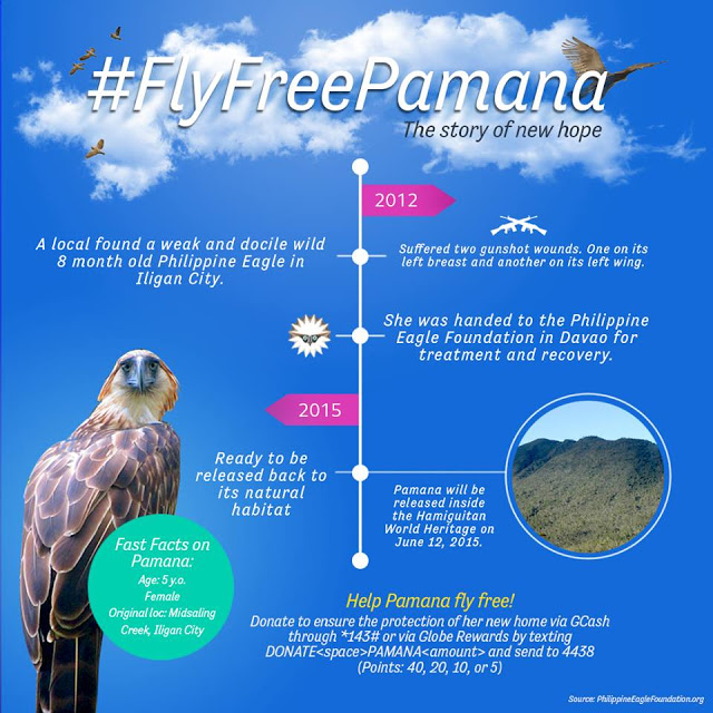 How to donate for Philippine Eagle conservation through your cellphone