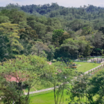 Bukidnon Zoo to open, here are the entrance fees and rules